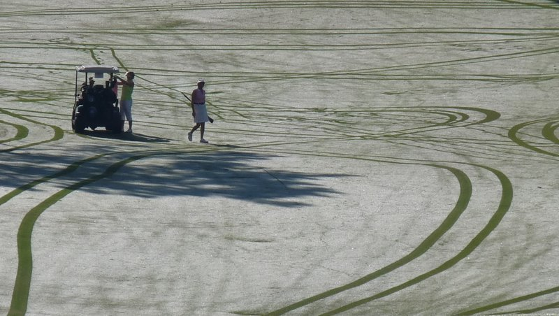 Early morning dew, early morning golfers