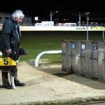 Parklife (Galway Greyhound Track)