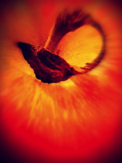 Abstract Red apple