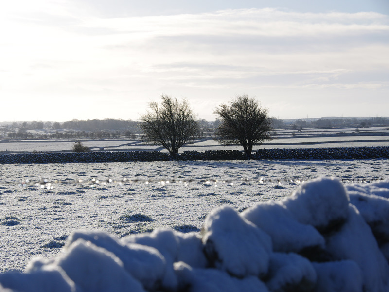 Ireland Snow, The first snowfall in Ireland of 2010.