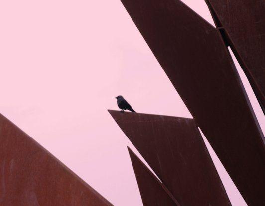Galway Hooker Sculpture Abstract (Blackbird Fly)