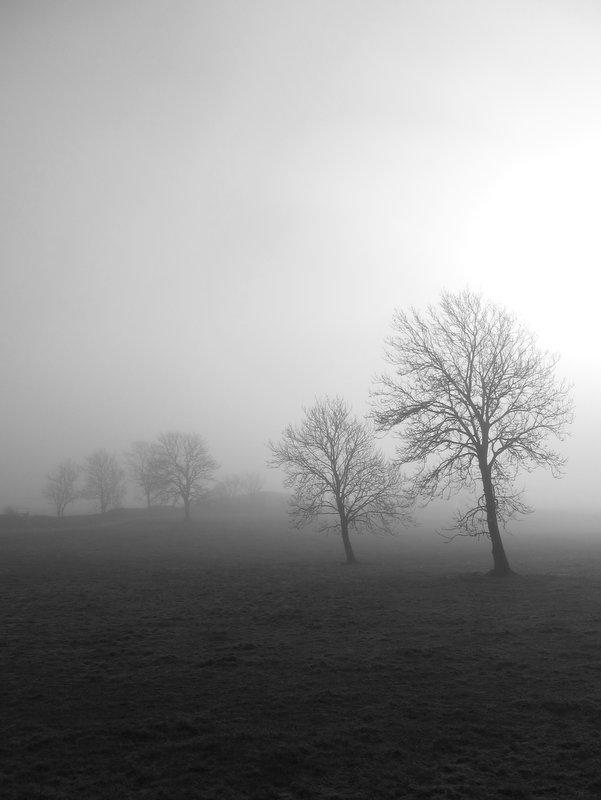 galway_landscape